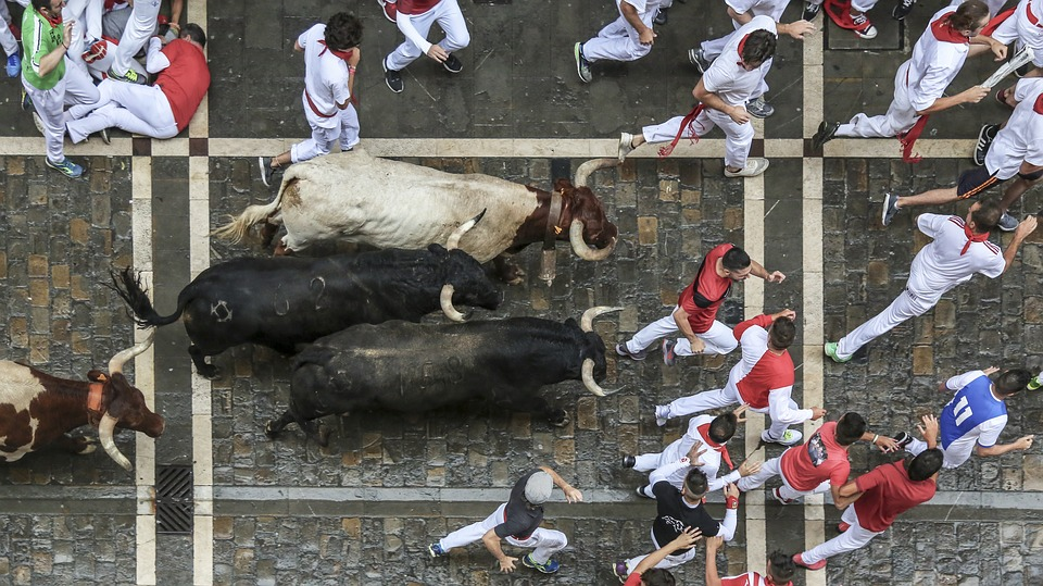 Pamplona, bull run, Spain, torreros