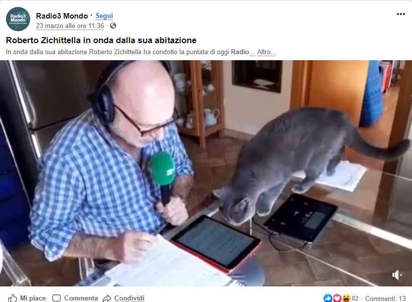 Radio 3 Modo, Italy broadcasting from home with a cat as their helper